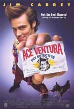Budala Dedektif 1 - Ace Ventura: Pet Detective